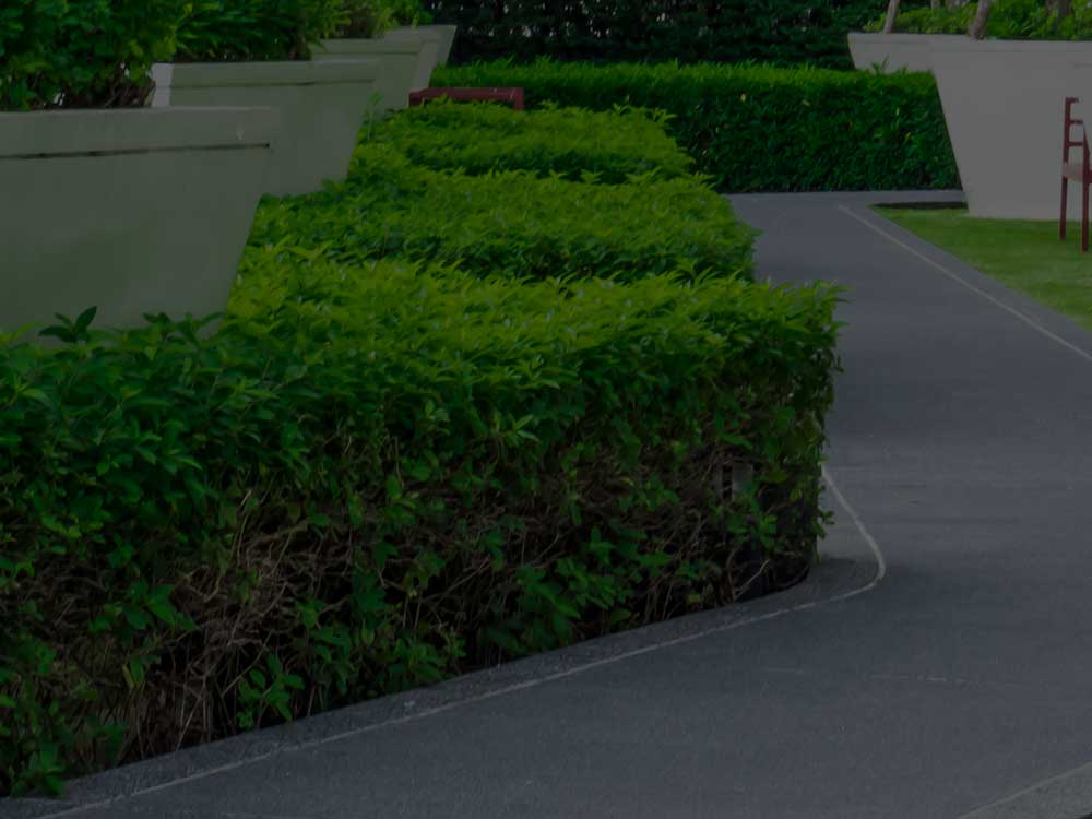 Marietta Commercial Landscaping
