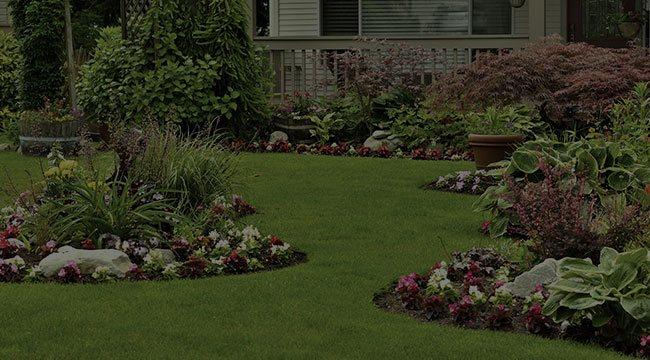 Marietta Landscape Design