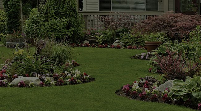Kennesaw Landscape Design